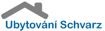 logo_schvarz